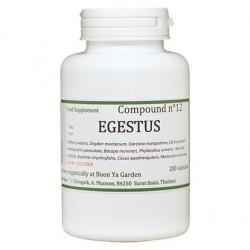 EGESTUS
